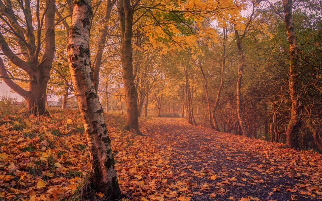 Autumn fun in Burnley